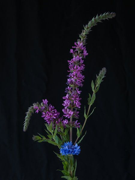 Bloemen #7922 van Daan Overkleeft