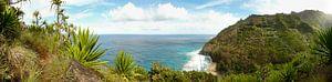 De Na Pali kust van Kauai, Hawaii in panorama