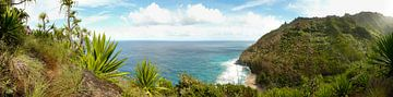 De Na Pali kust van Kauai, Hawaii in panorama van iPics Photography