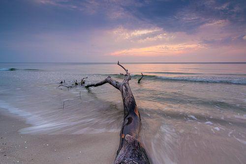 Darss Sunset van Martin Wasilewski
