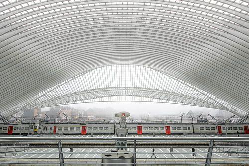 Trein in station Luik