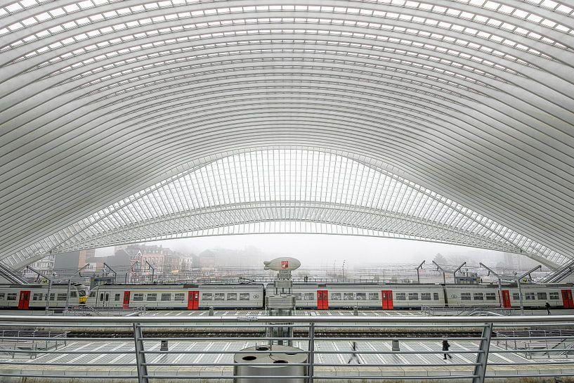 Trein in station Luik van Ellen Denkers-Hartman