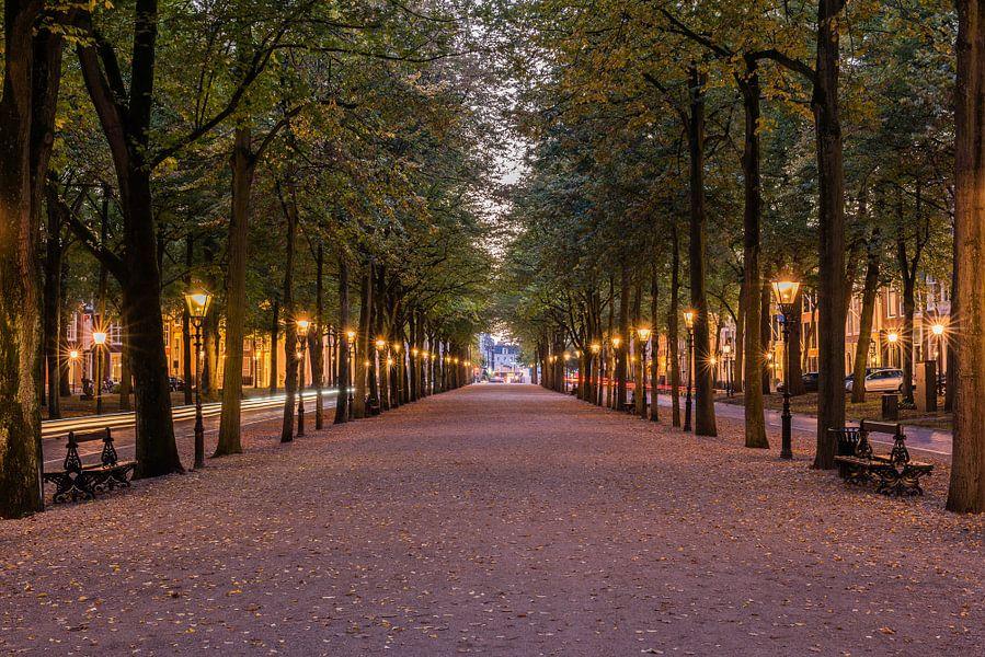 Het Lange Voorhout, Den Haag in het blauwe uur.