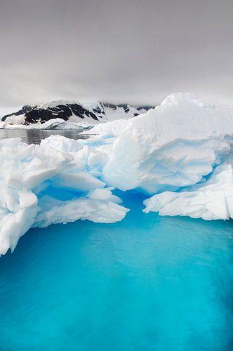 IJsbergen op Antarctica