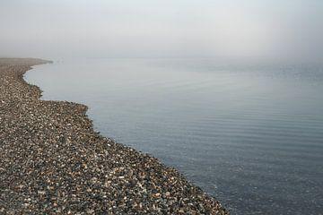 Misty morning Zeeland van Sonny Vermeer