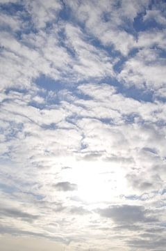 Sunny Day von Lyn Van Veldhoven
