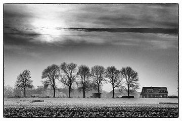 Winter in de Hoeksche Waard 2 sur Roel Dijkstra