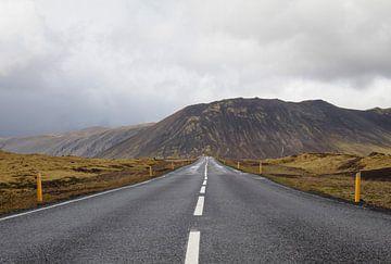 Road Trip van iris hensen