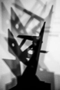 Abstracte schaduw van Dianthe Forkink