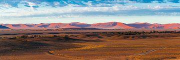 De duinen van de Sossusvlei in de verte, Namibië van Rietje Bulthuis