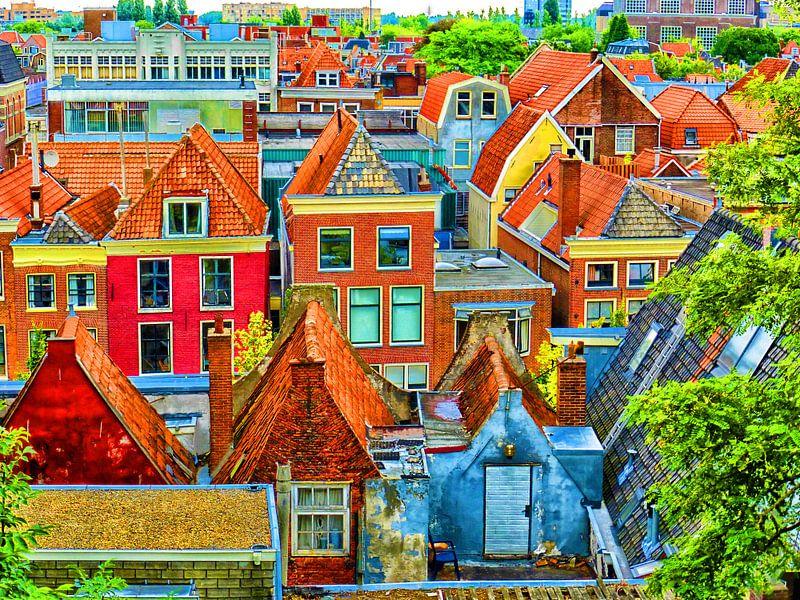 Diverse oude pandjes, gezien vanaf de Burcht in Leiden van Jessica Berendsen