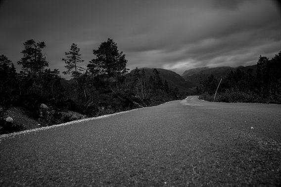 Endless Road van Bart Berendsen
