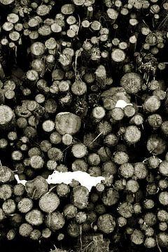 Holzstapel mit ein wenig Schnee - schwarz und weiss von Ginkgo Fotografie