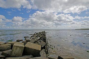 Damm im Wattenmeer von Wim van der Geest