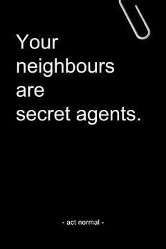 Your neighbours are secret agents van AJ Publications
