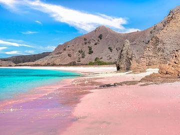 Roze stranden in Komodo National Park Indonesië van Rik Pijnenburg