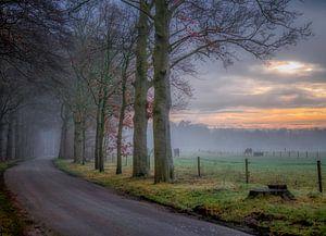 Tussen Doorn en Leersum van Robin Pics (verliefd op Utrecht)