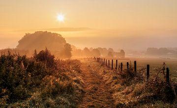 Mistige zonsopkomst bij Epen in Zuid-Limburg van