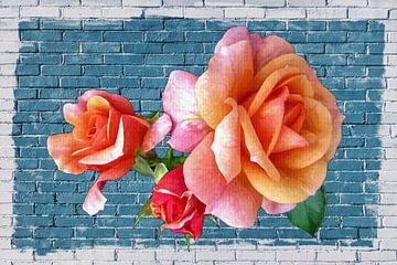 Rosen an der blauen Wand von didier de borle