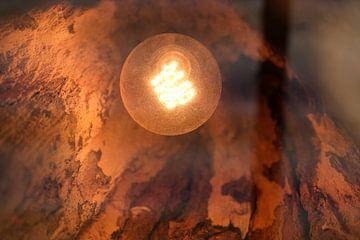 warm licht van Johan Michielsen