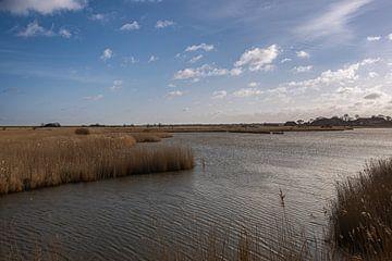 Landschapsfoto van het natuurreservaat Leyhörn van David Esser