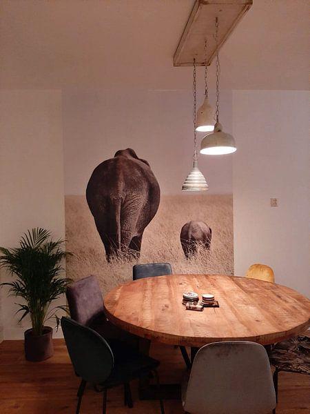 Klantfoto: Olifant met kleintje  van Esther van der Linden, als behang