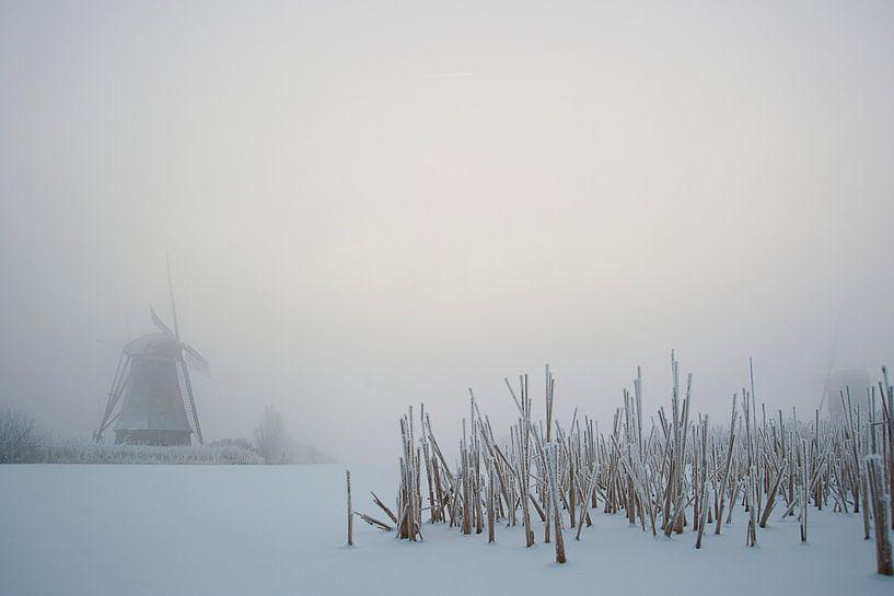 Little winter wonderland van Aline van Weert