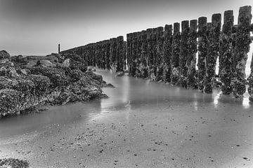 Zeeland strand von Jan van der Vlies