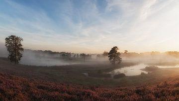 Vor Sonnenaufgang von Lex Schulte
