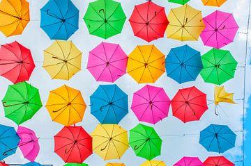 paraplui's van Blond Beeld