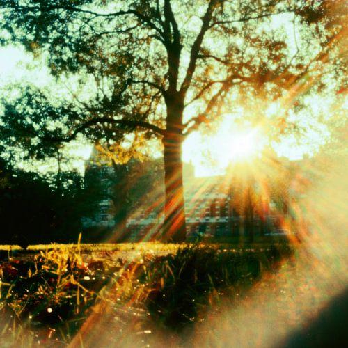 pinhole Oosterpark von Marije Engelsman