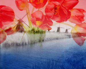 Dutch Mills Kinderdijk - Double Exposure van Melanie Rijkers