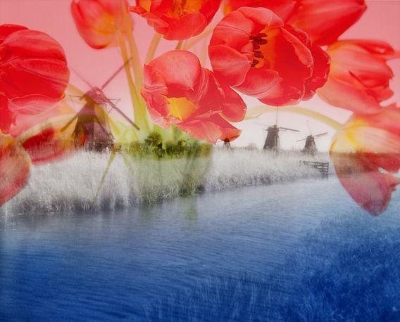 Dutch Mills Kinderdijk - Double Exposure