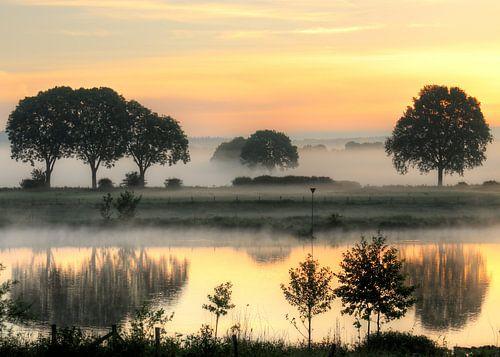 Mooie vroege zomerochtend aan de Maas