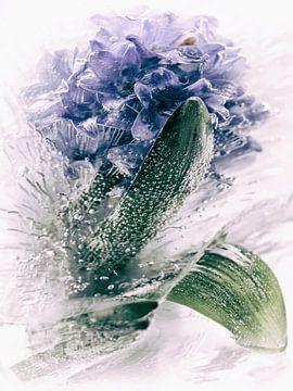 bevroren blauw van Fotografie & Digital Art von Margit Lisa Roeder