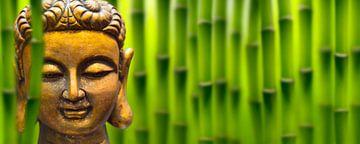 gouden boeddha hoofd in bamboebos van Dörte Stiller