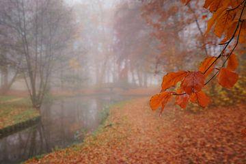 Herfst en mist in Notoaristuun te Grootegast van Annie Jakobs