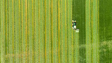 Weide mähen von Paul van Baardwijk