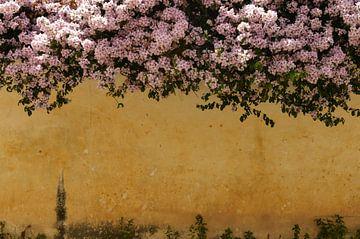 Kleurrijke  bloemenmuur van Zoe Vondenhoff