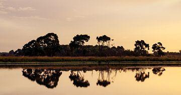 Strabrechtse Heide 114 von Deshamer