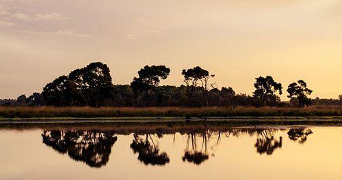 Strabrechtse Heide 114