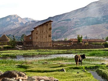 Plattelandsleven in Peru van Onne Kierkels