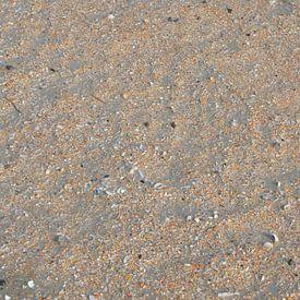 Schelpjes van Op Het Strand