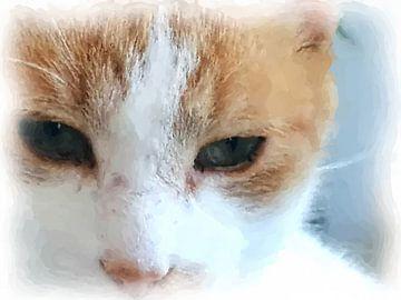 Katzenaugen von Maurice Dawson