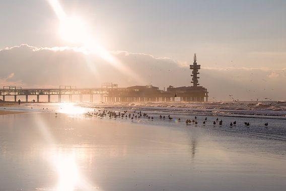 De Pier van Scheveningen van Jessica Van Wynsberge
