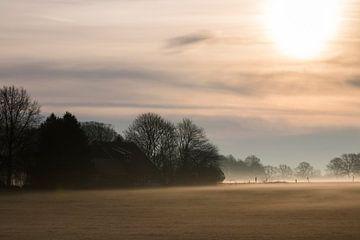 Früher Morgen von Anne Vermeer