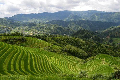 Magisch uitzicht op de Longsheng rijstterrassen van