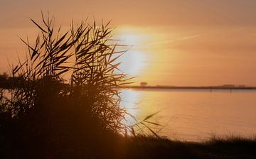 Zonsondergang von Diana de Bruin