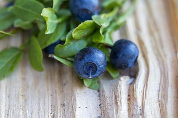 Wilde blauwe bosbessen van Hilda Weges