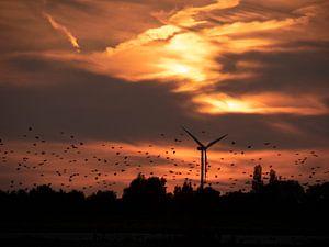 Zonsondergang met silhouet van windmolen van Elize Fotografie